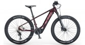 KTM-Macina-Team-272-Glorius-1040-560